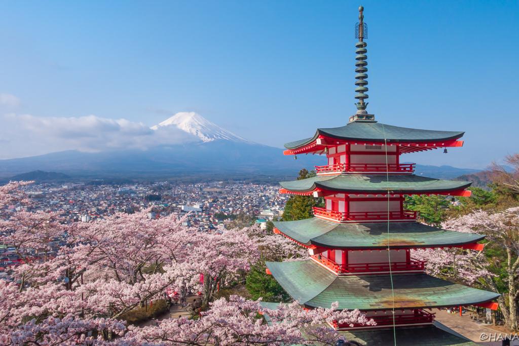 新倉山浅間公園に行くなら富士山...